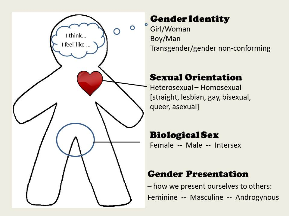 Gender Identity  Sexual Orientation Whats It All Mean -4448